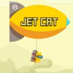 جت سواری گربه